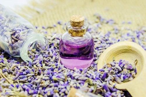 aceite-de-lavanda-para-perfumar-naturalmente