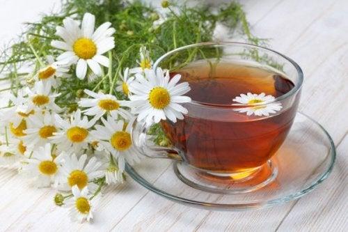 Flores e infusión de manzanilla