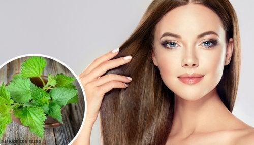 ¿Qué tan buena es la ortiga para el cabello?