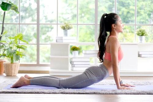 Los 11 mejores estiramientos para la espalda