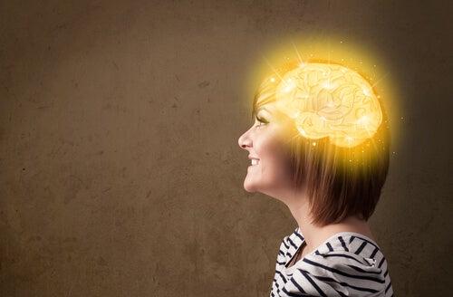 dieta cerebro