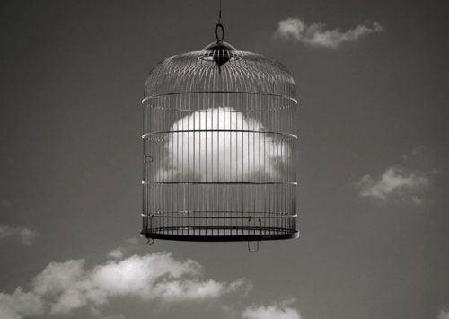 La libertad no está fuera