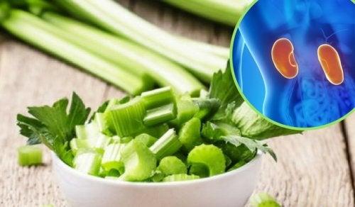 5 remedios herbales para combatir el dolor en los riñones