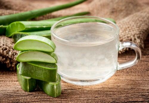 6 remedios caseros fabulosos a base de penca de sábila