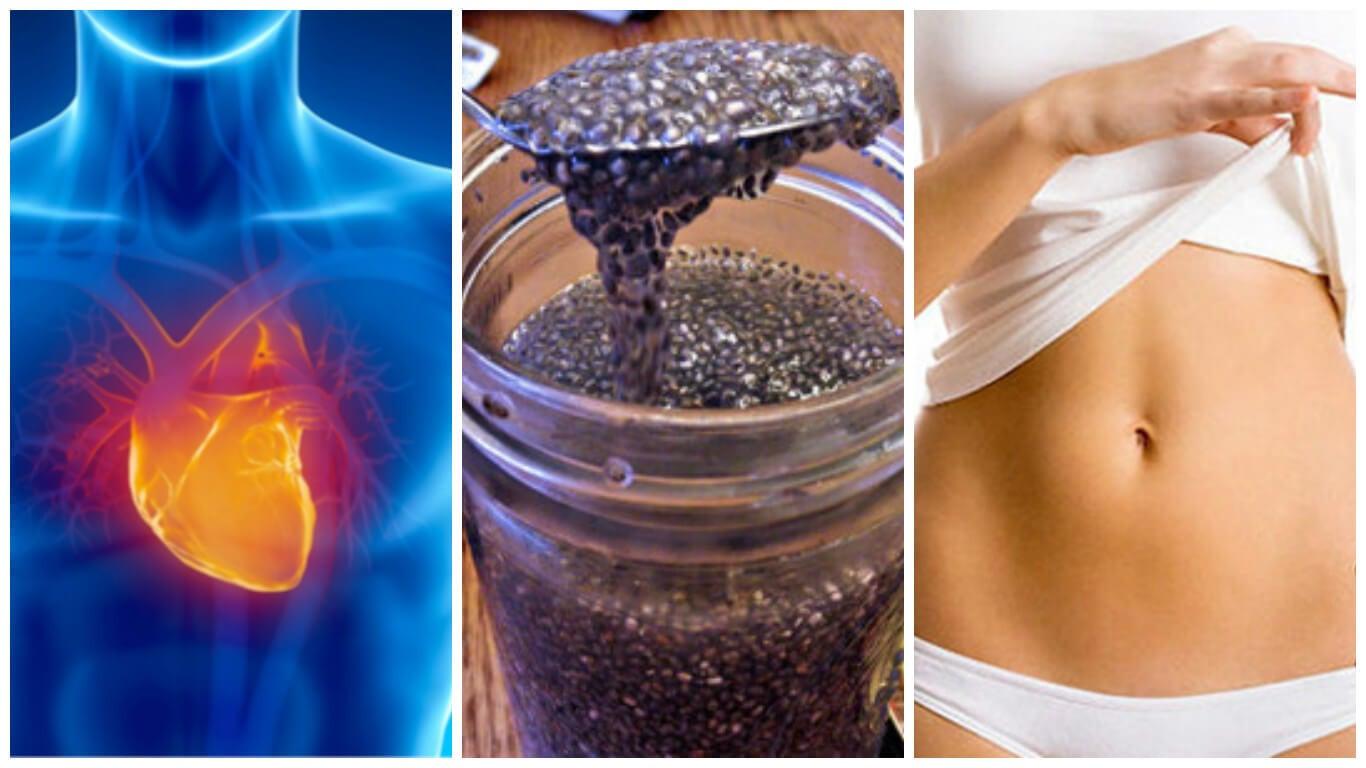 8 razones para empezar a incluir semillas de chía en tu dieta
