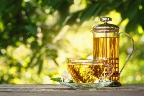 té de damiana