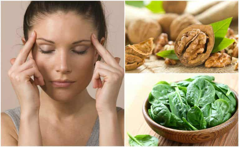 7 alimentos que te ayudan a potenciar las funciones cerebrales