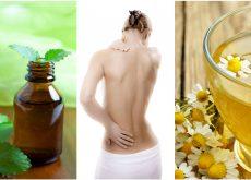 7 relajantes musculares que te brinda la naturaleza