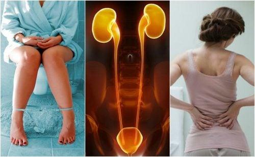 7 síntomas que experimentas cuando tus riñones comienzan a fallar