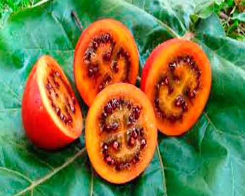 4 extrañas frutas y verduras que seguro que no conoces