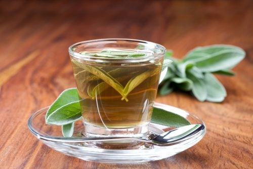 Cómo preparar té de salvia.