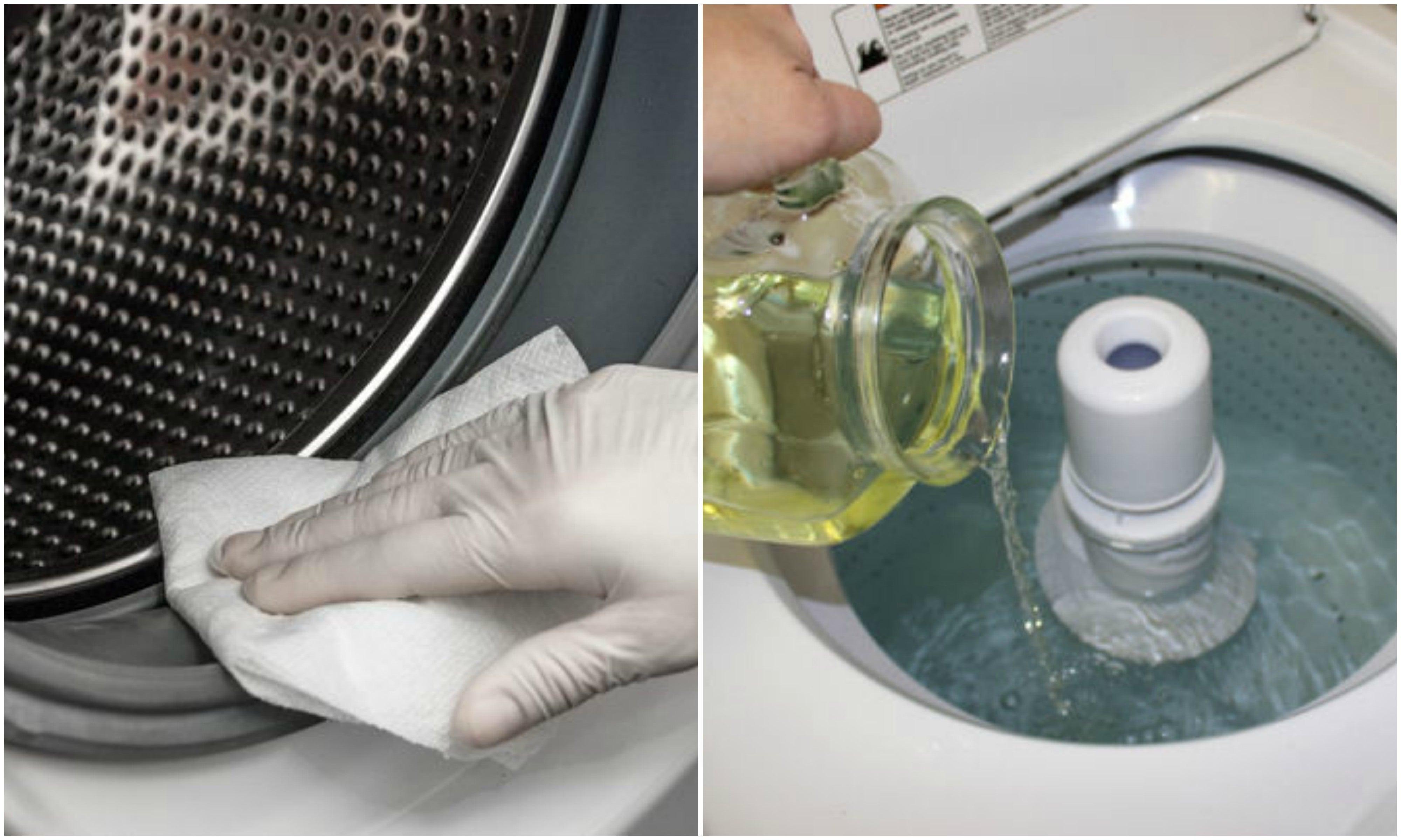 Elimina el moho de tu lavadora con estas 3 soluciones ecológicas