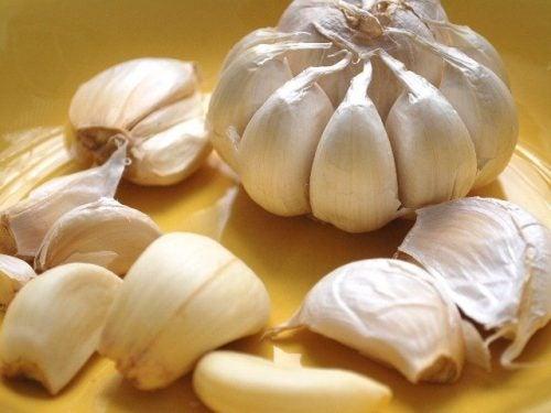 Usa el ajo para adquirir nutrientes