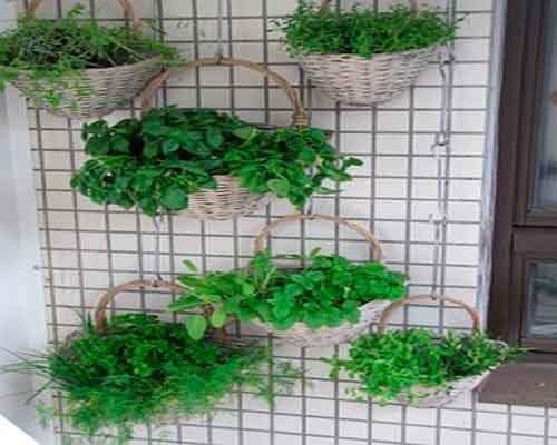 jardin-colgante