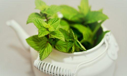 6 Productos naturales que quitan las ganas de vomitar
