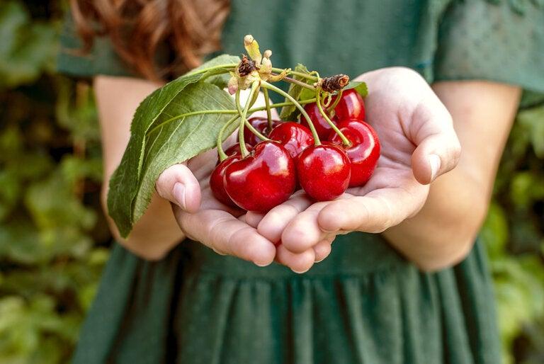 5 alimentos recomendados para prevenir la osteoartritis