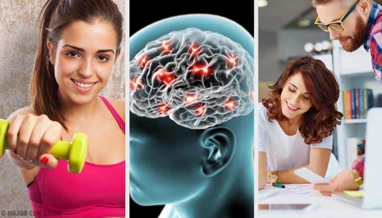 8 consejos neurobiológicos que te ayudarán a ser feliz