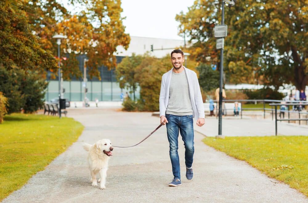 Beneficios de pasear al perro cada día