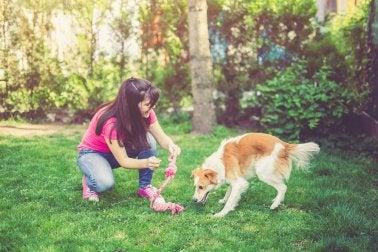 actividades en medio de la naturaleza con el perro