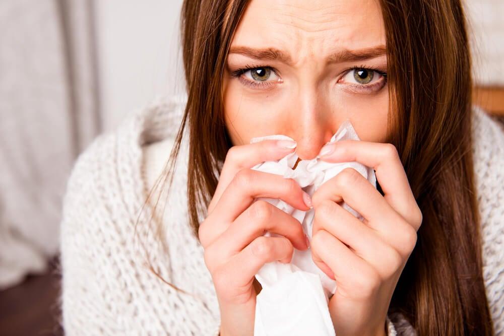 6 plantas medicinales para curar la rinitis alérgica