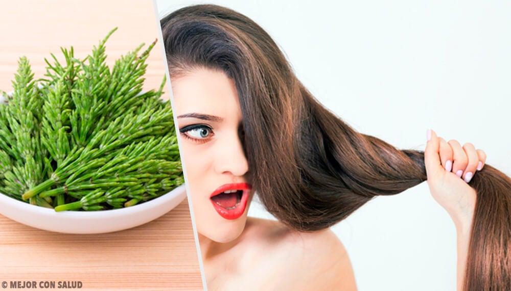 Cómo usar cola de caballo para el crecimiento del cabello