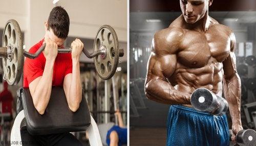 hacer biceps defraud mancuernas