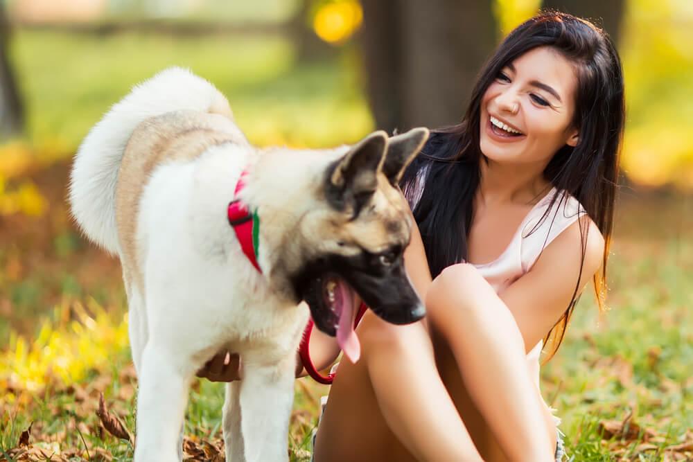 El sedentarismo no es aconsejable para los animales