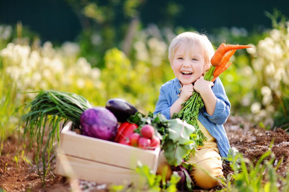 La necesidad de nutrientes y los complementos dietéticos a los niños