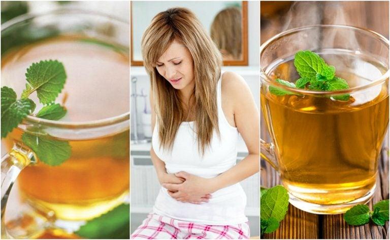 Las 5 mejores infusiones para calmar el colon irritable