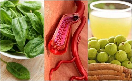 Defensas en adultos suben las alimentos que