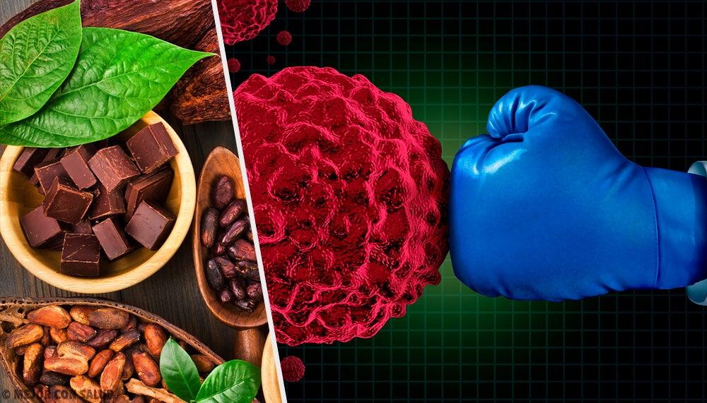 Los beneficios del cacao en nuestro sistema inmunitario