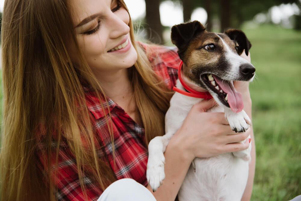 Los sorprendentes beneficios de pasear al perro cada día.