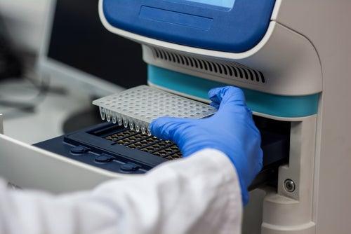 Científico practicando PCR a un paciente susceptible de tener hepatitis C