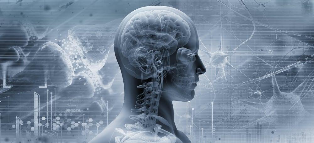Unidad funcional del cerebelo