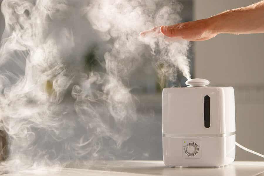 Humidificador de vapor.