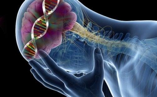 9 efectos sorprendentes asociados a un nivel bajo de serotonina