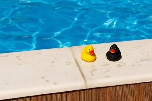 Las piscinas públicas y el riesgo de infecciones