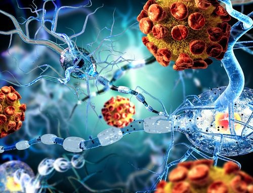 Imagen 3D de un virus provocando meningitis