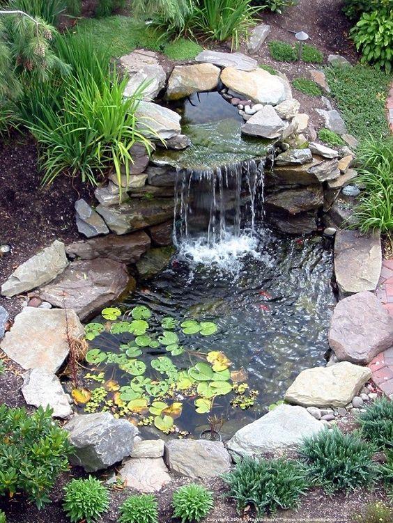 Idea de estanque numero 1