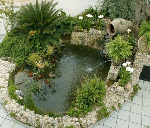 Idea de estanque numero 2