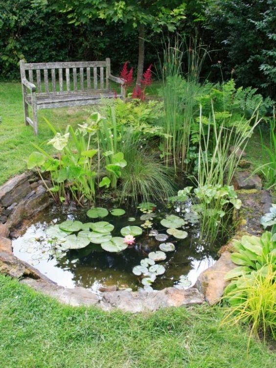 Idea de estanque numero 3
