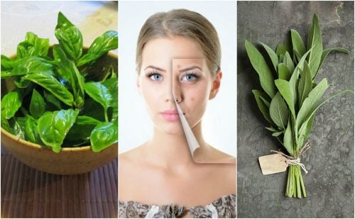 5 hierbas que te ayudarán a combatir el acné