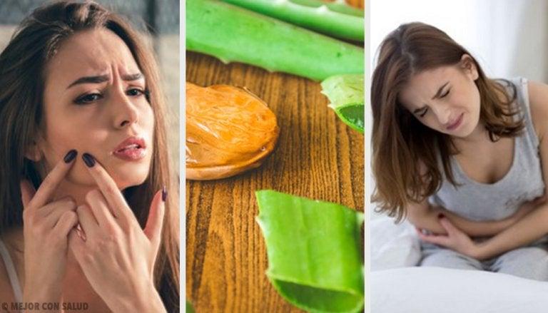 6 formas de usar el aloe vera y mejorar tu salud