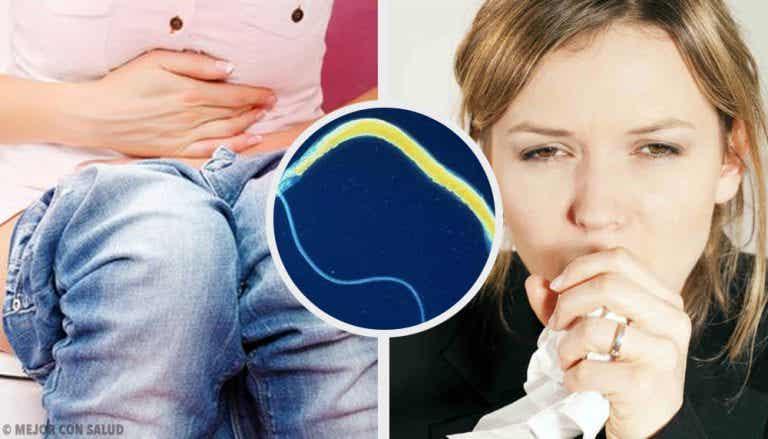6 síntomas de las lombrices intestinales