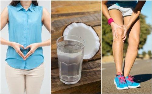 7 razones por las que te encantará consumir agua de coco