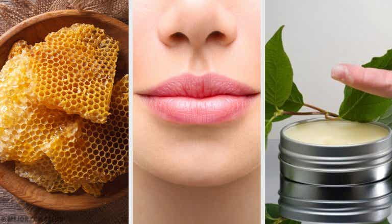 7 remedios naturales para eliminar las grietas de los labios
