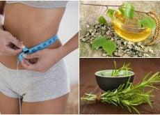 8 hierbas saludables que apoyan tu dieta para adelgazar