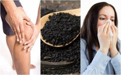 8 propiedades de las semillas de comino negro