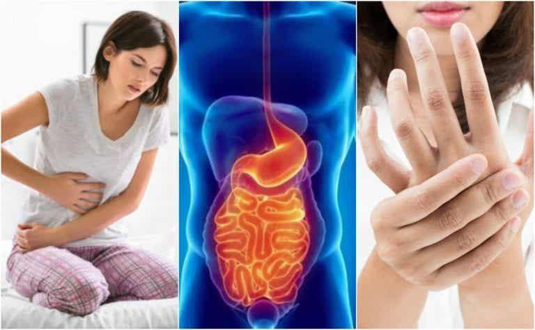 8 síntomas de síndrome del intestino permeable que no debes ignorar