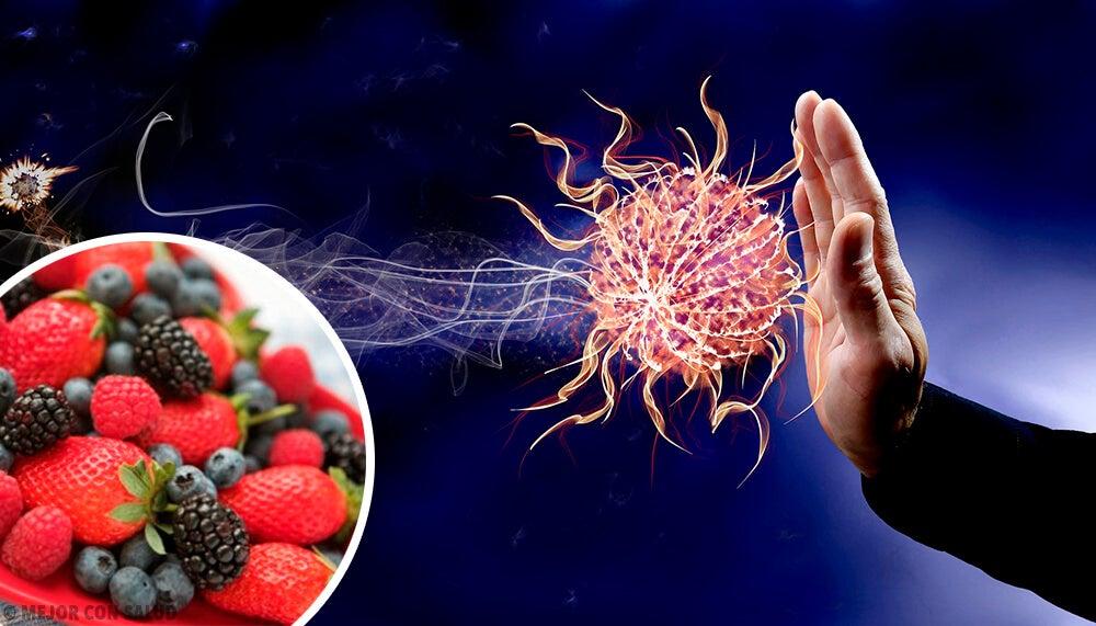 Dieta para aumentar defensas inmunologicas